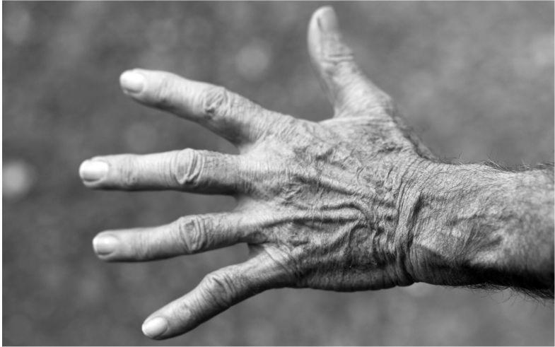 Mesa Redonda: El papel de la familia en la enfermedad de Alzheimer